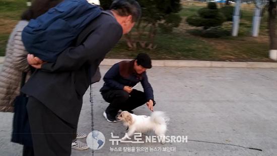 2018.11.15 대동강산책길에 만난 강아지 아베 (2).jpg