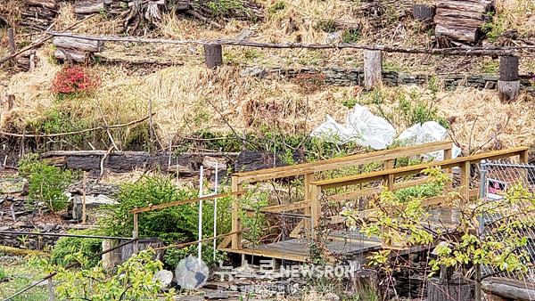 Flowers' Island에 있는 매실나무를 다시 냉해를 입지 않도록 비닐로 싸주었다..jpg
